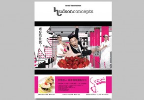 hudsonconcepts Print Advertisment