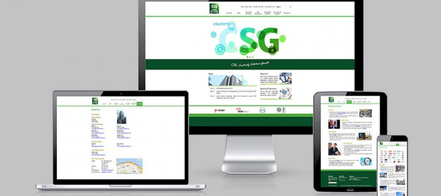 CSG Consumer Search Group Website
