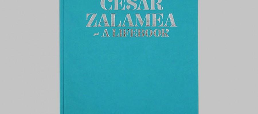 Life of Cesar Book