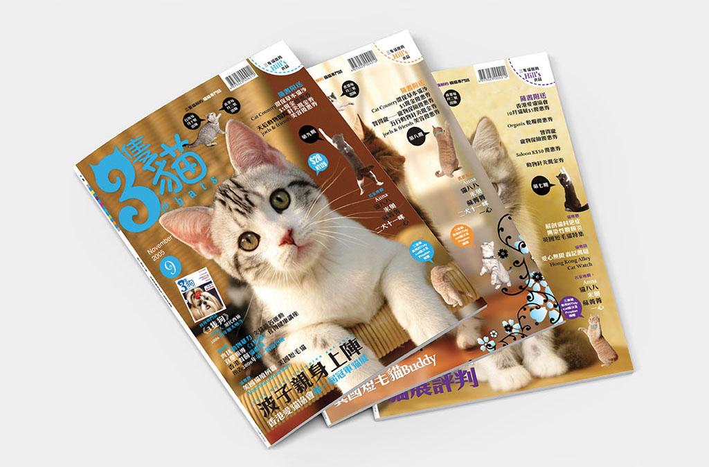 3chats//3隻貓